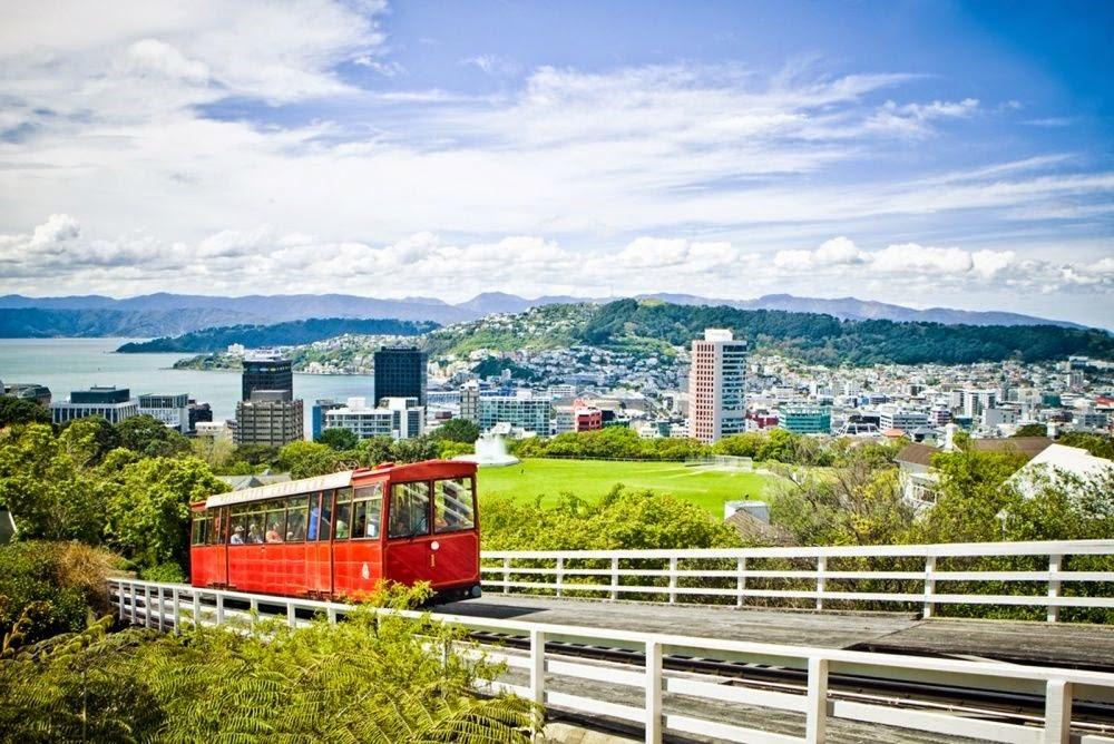 Blog Wellington